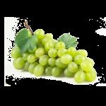 грозде пловдив